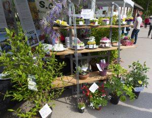 Art floral   8665--